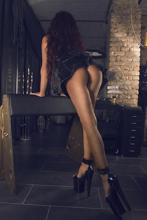 lady leyla frankfurt swingerclub jena